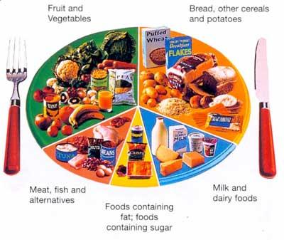 Healthy Eating: Free Diet Menus